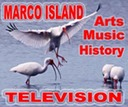 MARCO TV AD WEB PAGE2